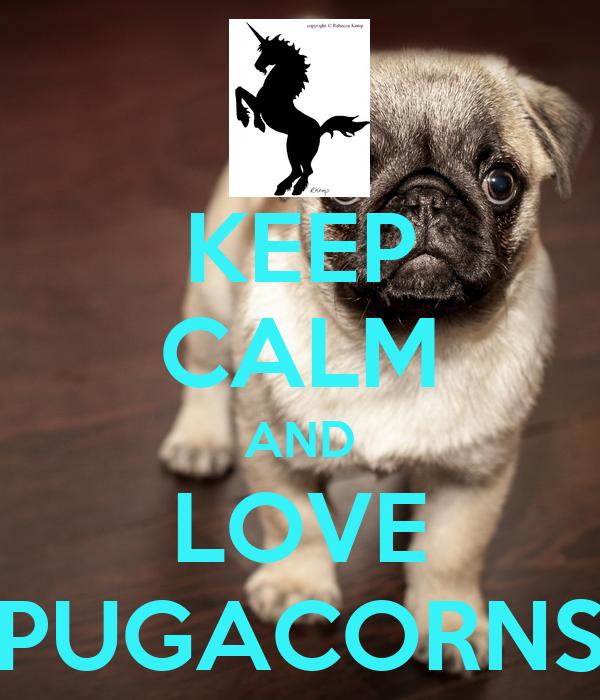 KEEP CALM AND LOVE PUGACORNS