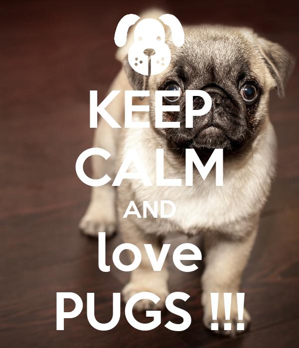 KEEP CALM AND love PUGS !!!
