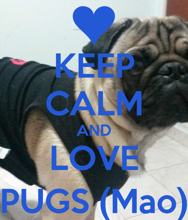 KEEP CALM AND LOVE PUGS (Mao)