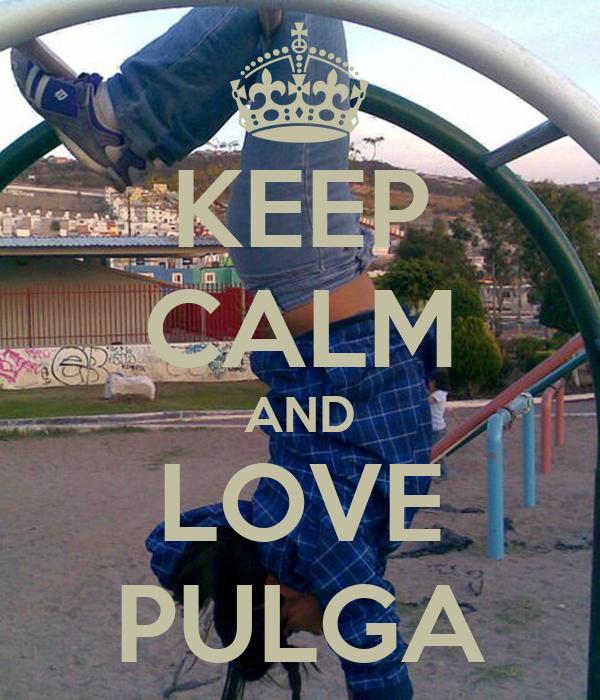 KEEP CALM AND LOVE PULGA