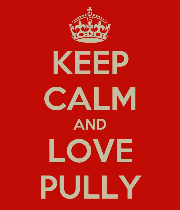 KEEP CALM AND LOVE PULLY
