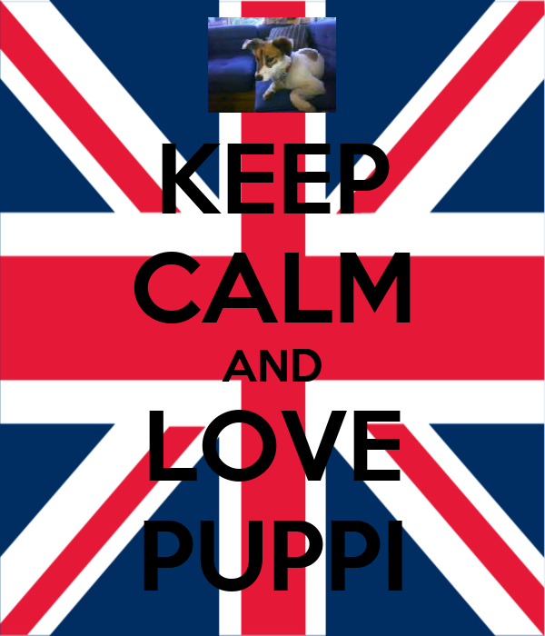 KEEP CALM AND LOVE PUPPI