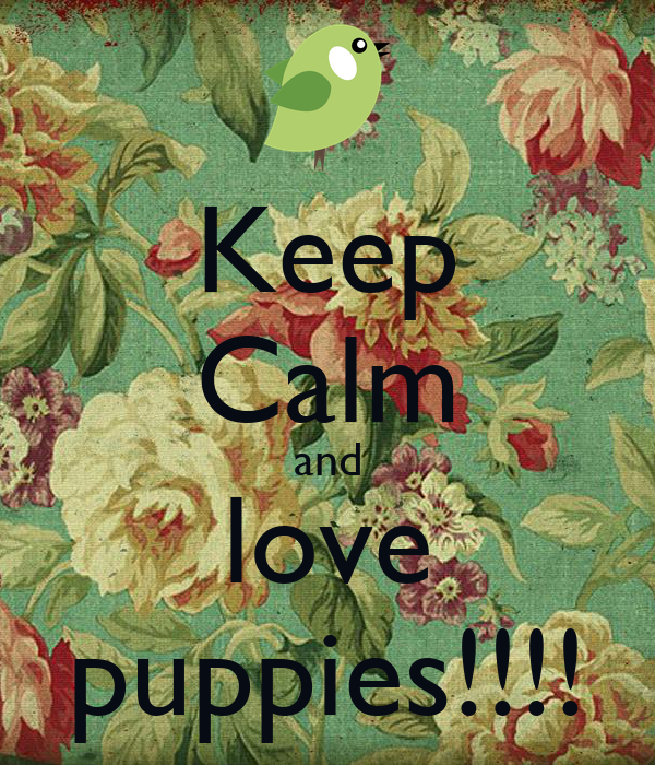 Keep Calm and love puppies!!!!