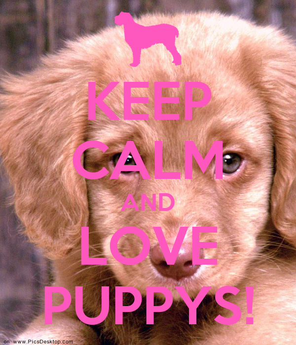 KEEP CALM AND LOVE PUPPYS!