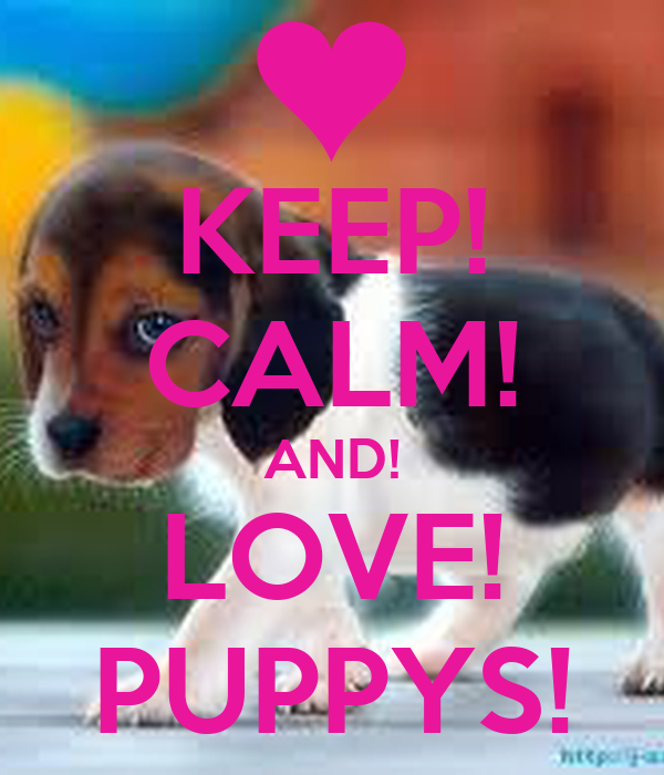KEEP! CALM! AND! LOVE! PUPPYS!