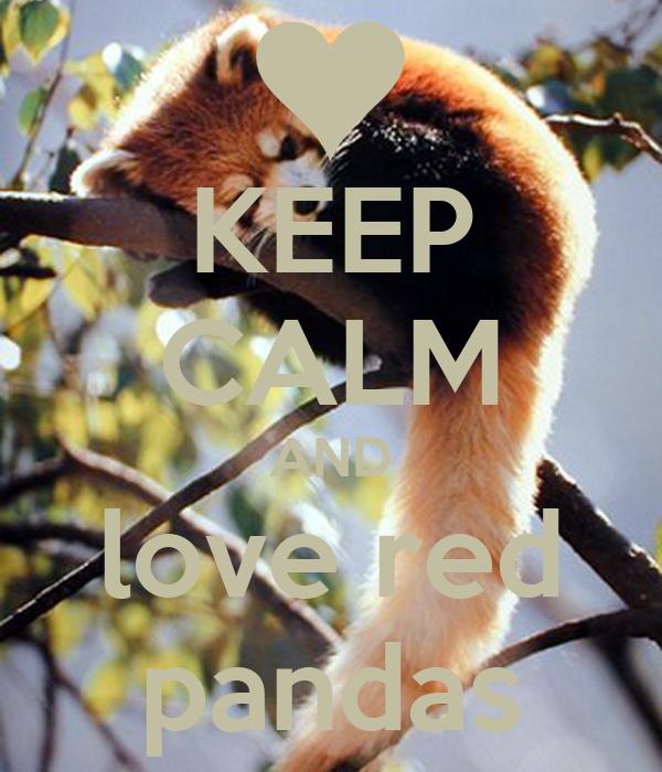 KEEP CALM AND love red pandas