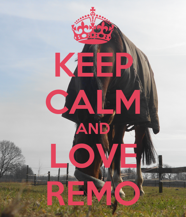 KEEP CALM AND LOVE REMO