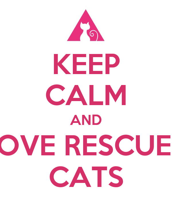 KEEP CALM AND LOVE RESCUED CATS
