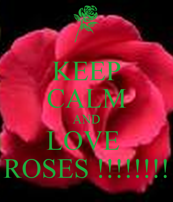 KEEP CALM AND LOVE  ROSES !!!!!!!!