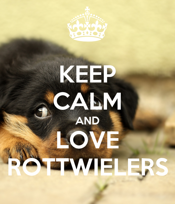 KEEP CALM AND LOVE ROTTWIELERS
