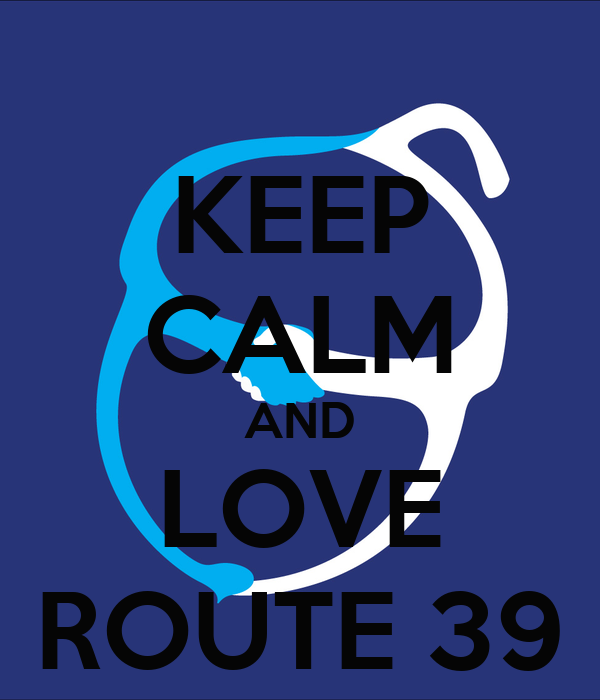 KEEP CALM AND LOVE ROUTE 39
