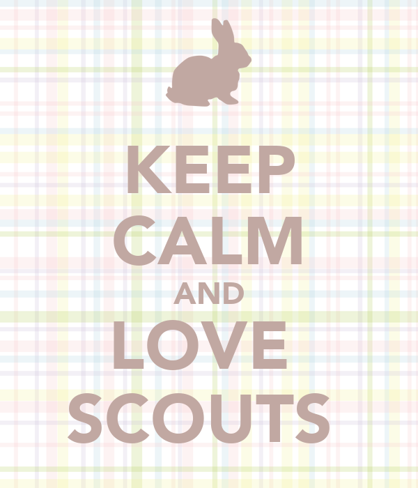KEEP CALM AND LOVE  SCOUTS