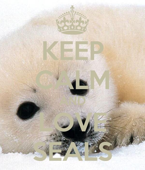 KEEP CALM AND LOVE SEALS