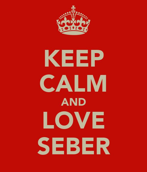 KEEP CALM AND LOVE SEBER