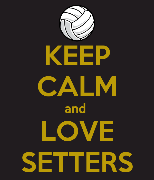 KEEP CALM and  LOVE SETTERS