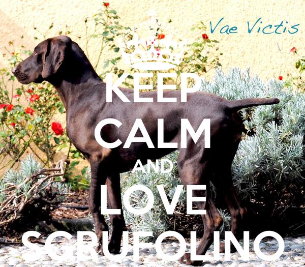 KEEP CALM AND LOVE SGRUFOLINO