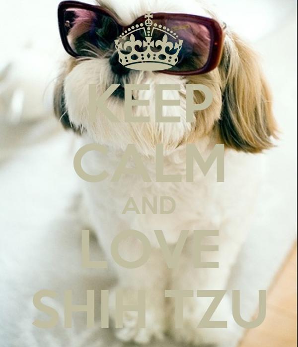 KEEP CALM AND LOVE SHIH TZU