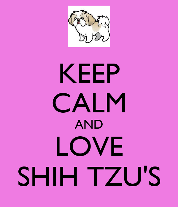 KEEP CALM AND LOVE SHIH TZU'S