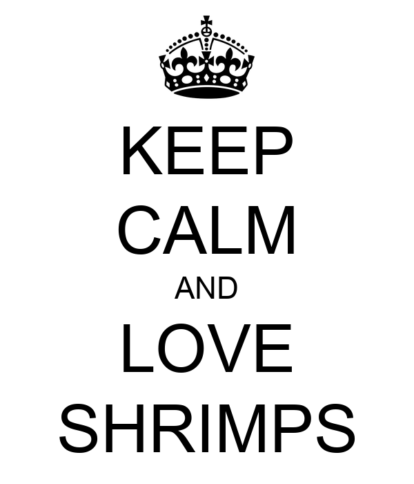 KEEP CALM AND LOVE SHRIMPS