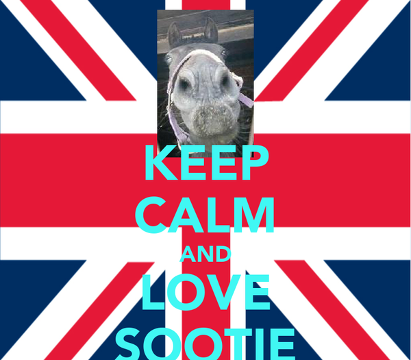 KEEP CALM AND LOVE SOOTIE