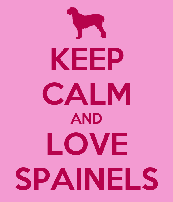 KEEP CALM AND LOVE SPAINELS