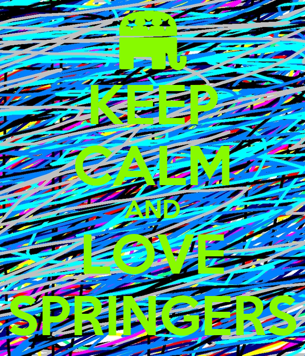 KEEP CALM AND LOVE SPRINGERS
