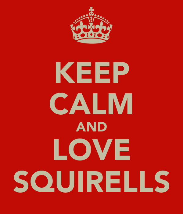 KEEP CALM AND LOVE SQUIRELLS