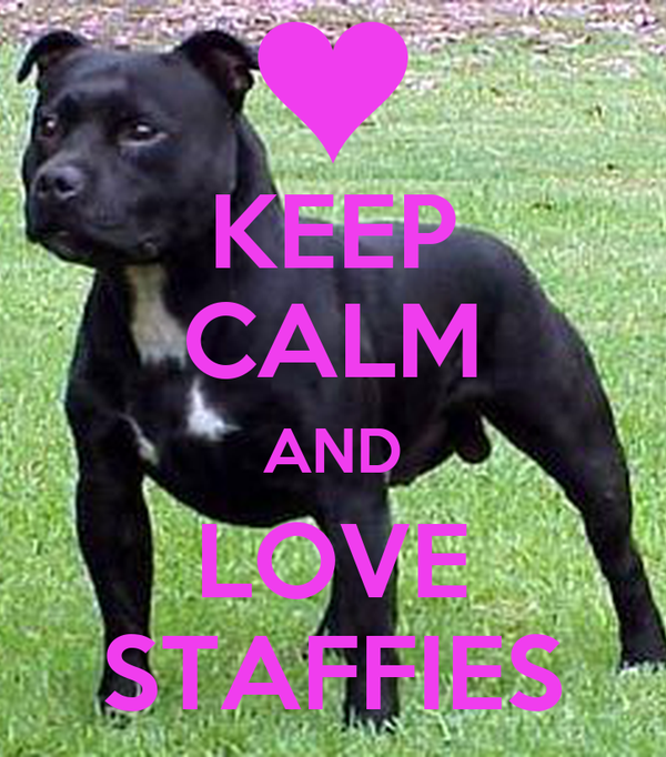 KEEP CALM AND LOVE STAFFIES