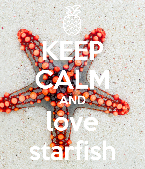 how to keep a starfish alive