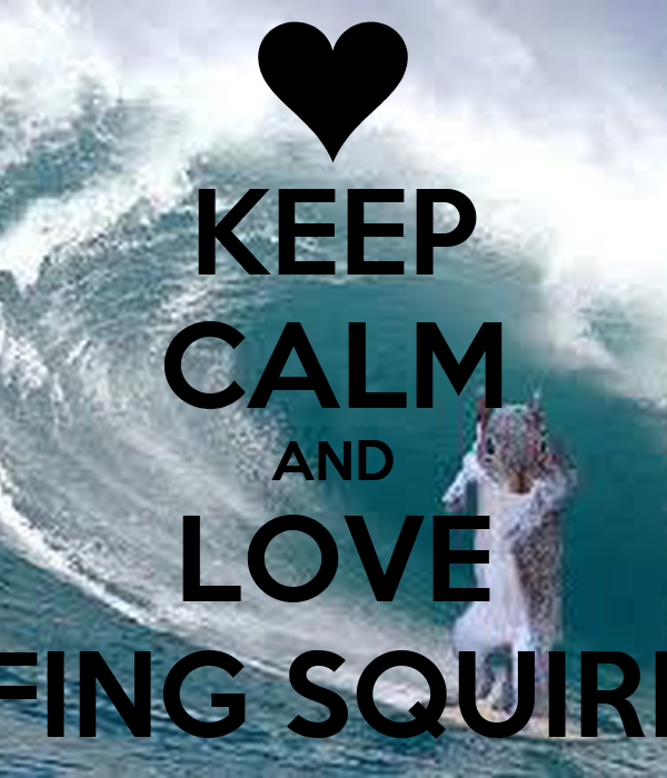 KEEP CALM AND LOVE SURFING SQUIRRELS