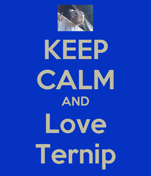 KEEP CALM AND Love Ternip