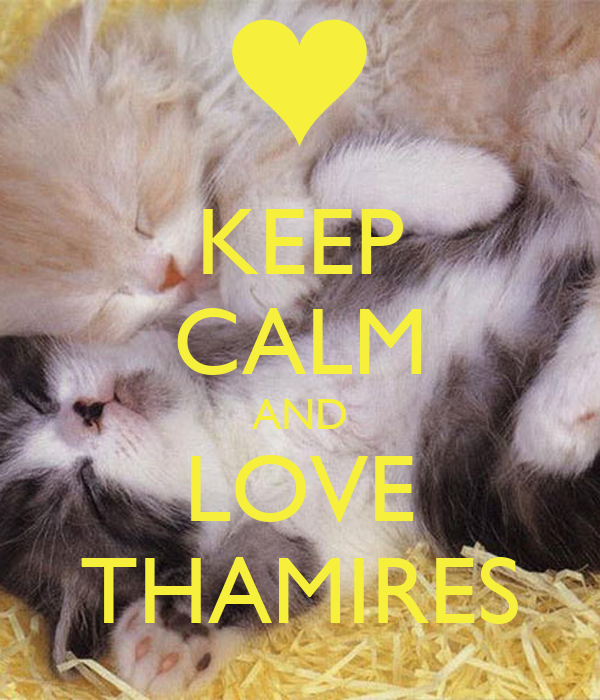 KEEP CALM AND LOVE THAMIRES