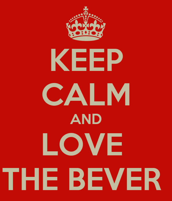 KEEP CALM AND LOVE  THE BEVER