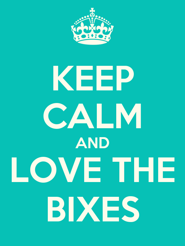 KEEP CALM AND LOVE THE BIXES