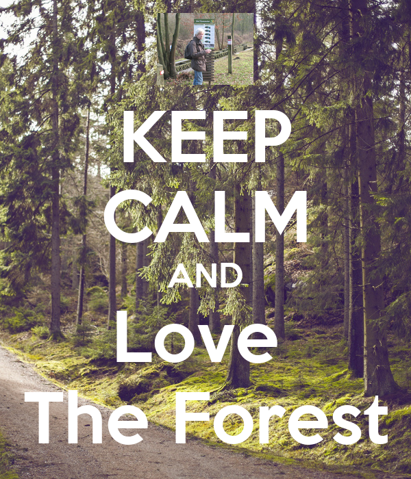 KEEP CALM AND Love  The Forest