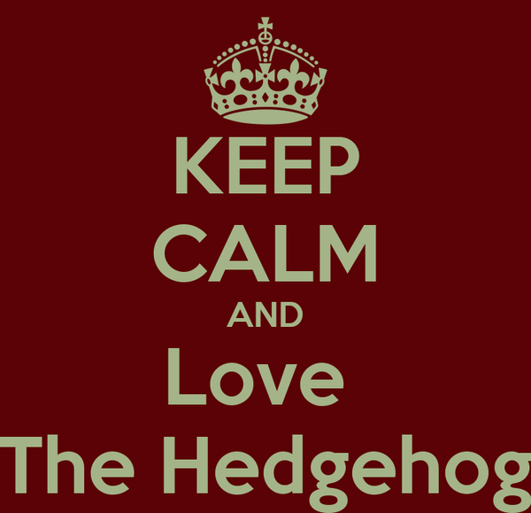 KEEP CALM AND Love  The Hedgehog