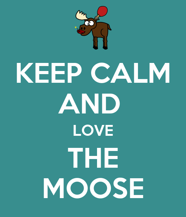 KEEP CALM AND  LOVE THE MOOSE