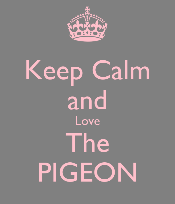Keep Calm and Love The PIGEON