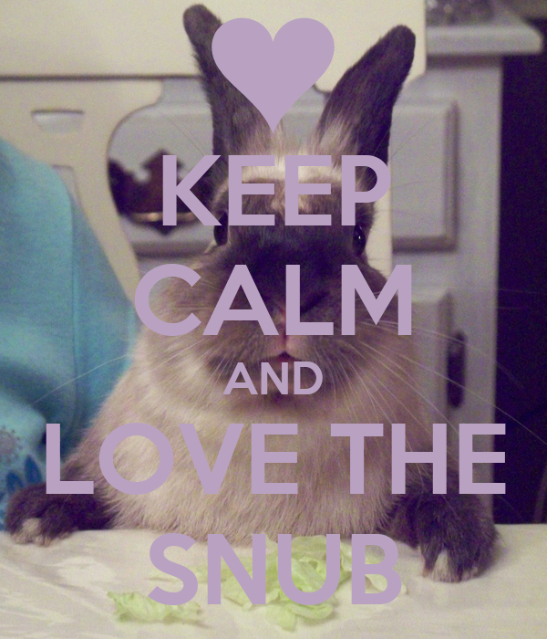 KEEP CALM AND LOVE THE SNUB