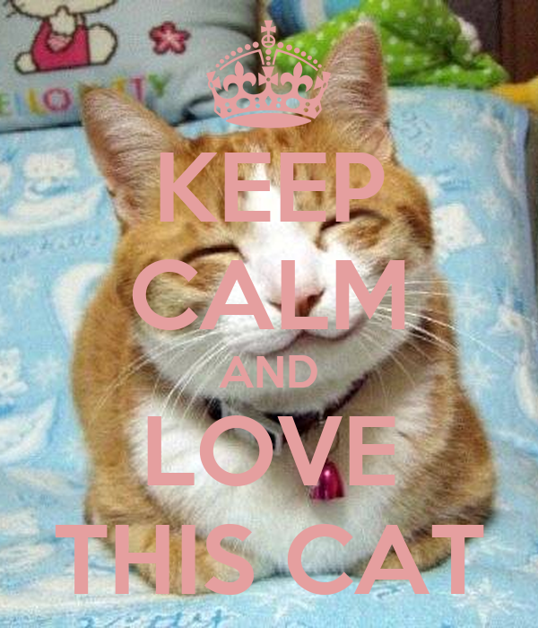 KEEP CALM AND LOVE THIS CAT