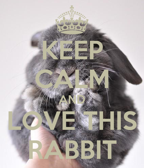 KEEP CALM AND LOVE THIS RABBIT