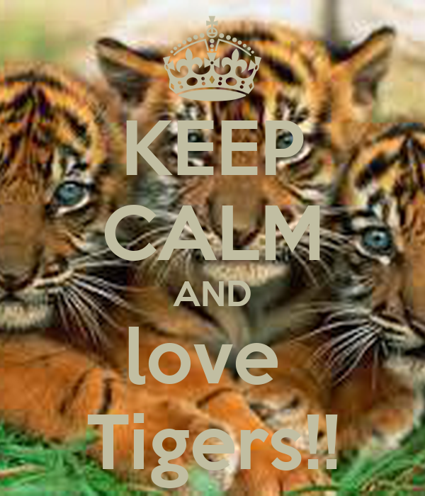 KEEP CALM AND love  Tigers!!