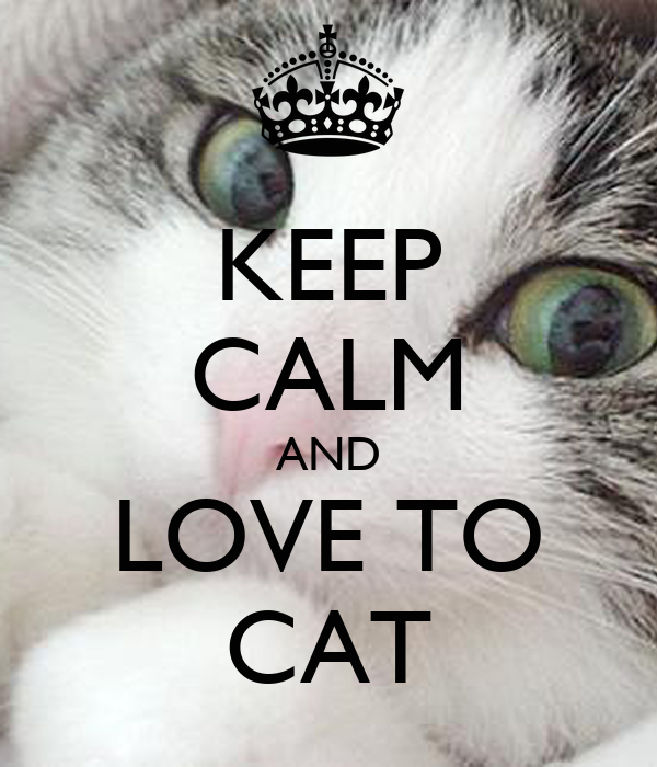 KEEP CALM AND LOVE TO CAT