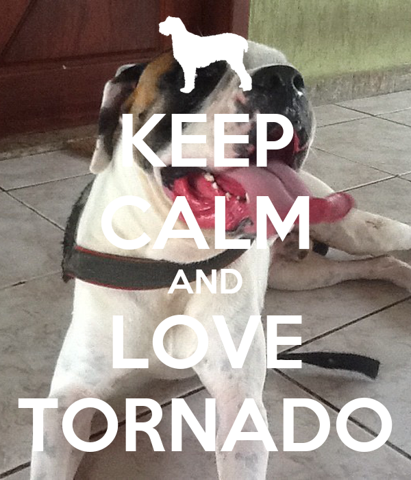 KEEP CALM AND LOVE TORNADO