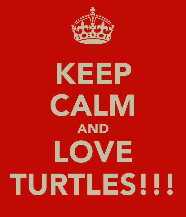 KEEP CALM AND LOVE TURTLES!!!