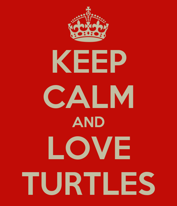 KEEP CALM AND LOVE TURTLES