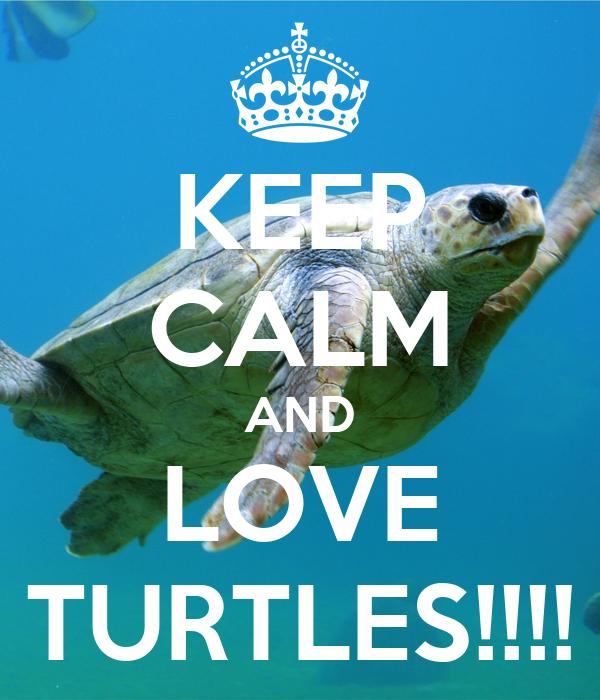 KEEP CALM AND LOVE TURTLES!!!!