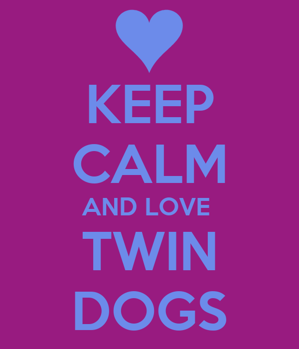 KEEP CALM AND LOVE  TWIN DOGS
