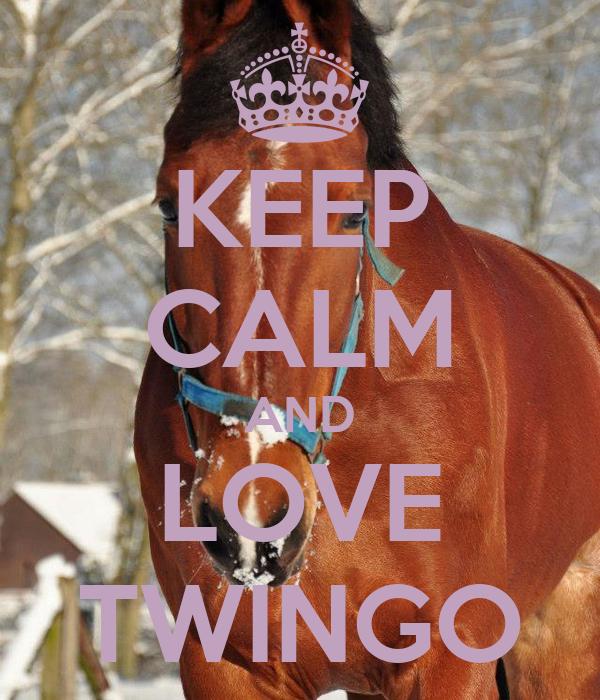KEEP CALM AND LOVE TWINGO