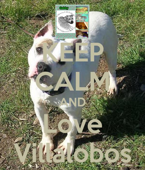 KEEP CALM AND Love Villalobos